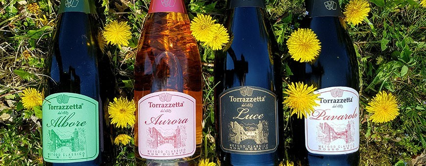 Sparkling Wines Online Store - Organic Wines Oltrepò Pavese, Pavia, Lombardy, Italy