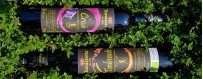 Dessert Wines Online Sale - Organic Wines Oltrepò Pavese, Pavia, Lombardy, Italy